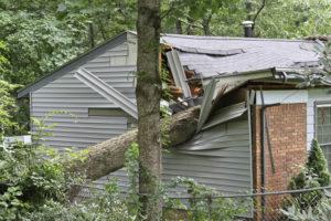 edilcasa-assicurazioni-casa