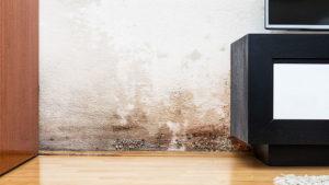 umidita-casa-edilcasa